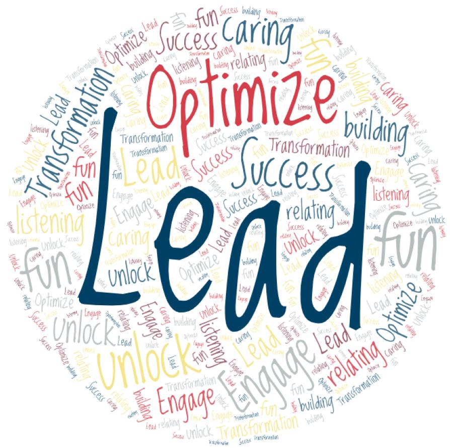 Optimize, Success, Lead graphic